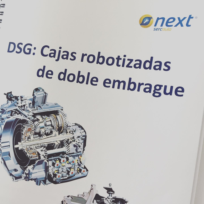 DSG3.jpg